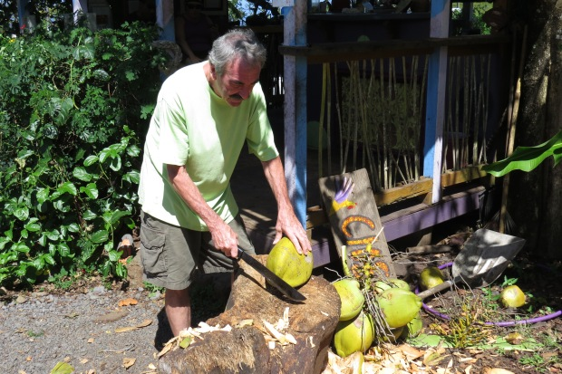 Coconut Glen's  |  Maui
