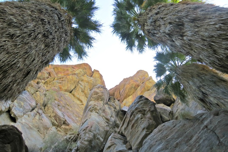 Indian Canyons Hike